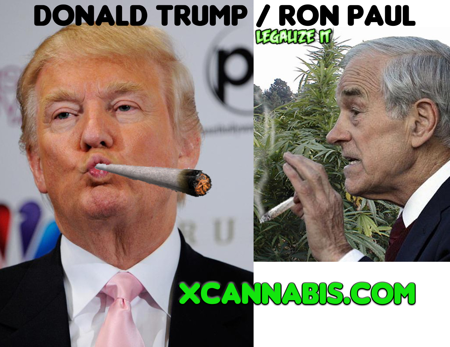 Ron Paul Donald Trump Ticket