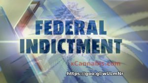 Federal Indictment of Medical Marijuana under Obama